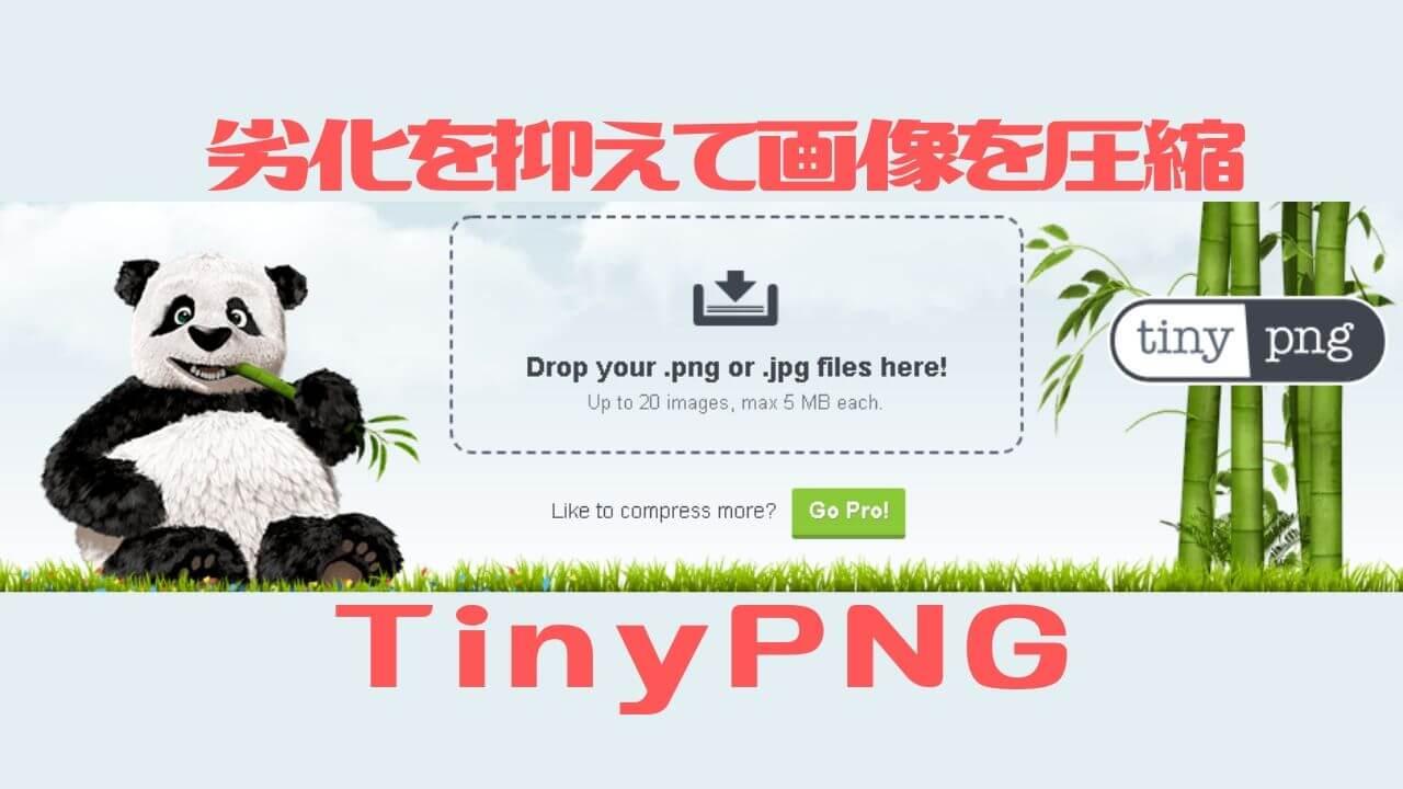 劣化を抑えて画像を圧縮_TinyPNG
